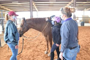 Sydney, her instructor Devon, and horse handler give Oakey a pat after class